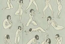 feminine anatomy