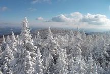 Winter / Winter in the Lake George Area has just as much to offer as summer with skiing, snowboarding, snowshoeing, snowmobiling and much more!