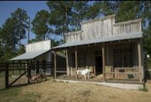 Goat Barns and Goat Playgrounds / Creative ideas for cute goat houses or goat barns as well as goat playgrounds.