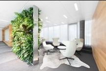 Interior Design - Office