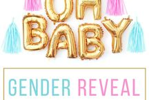 Gender reveal / Ideas for party