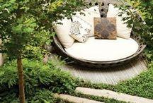 Garden envy / by Erika Last
