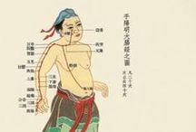 shiatsu/TCM / Shiatsu en TCM weetjes