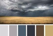 ⋆ Color combination | design, creative process ⋆