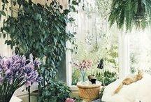 Gardens / Planters, gardens, indoor, outdoor, vertical...
