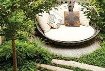 BACKYARD DREAMS / Gardening and back yard inspiration
