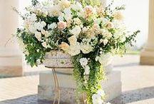 flowers / xdtyu