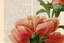 - Botanicals Art -