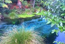 To indo Viajar / Viaje e veja dicas e informações da Nova Zelândia com a gente :)