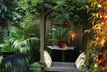 Garden Ideas and Outdoor Living / by Giselle Kingsberry