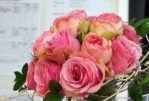 Abschlussarbeiten  Floristprüfung Juli 2017 / 15 Azubis vom Herwig Blankertz Berufskolleg haben am 5.7. erfolgreich ihre Abschlussprüfung Florist/in  beim FDF im FloristPark absolviert. Es sind wunderschöne, kreative Arbeiten entstanden! Gratulation !!!