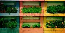 Reuse Pallet for gardening / You need inspiration and clever idea reusing old  Pallet for gardening? It is here!