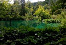 My photos of nature