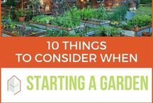 DIY - Best Gardening blog posts / Stop wasting time looking for resources — we'll hook you up with the best ones just for you.