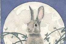 Bunny / Coniglietto