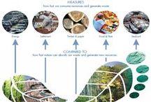 EKO 1 / Wykład 1 Ekologiczny odcisk stopy --  Lecture 1 Ecological Footprint