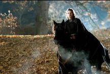Nel cerchio del tempo fantasy / Sfuggite a un terribile cataclisma, le Razze prosperano sotto la guida di Kronos, il re sfregiato. Durante la sua assenza una serie di efferati delitti insanguina la capitale gettando nel panico gli abitanti.  Riuscirà il giovane sovrano a tornare in tempo per proteggere la sua regina e salvare il regno?  http://www.amazon.it/Nel-cerchio-tempo-Liliana-Fiume-ebook/dp/B00JWWBPII