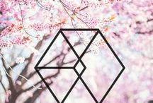 EXO | 엑소