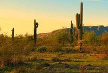 Tucson | Outdoors / Local outdoor destinations and recreation near Tucson, Arizona