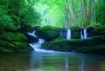 Knoxville | Outdoors / Local outdoor destinations and recreation near Knoxville, Tennessee.