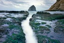 We love Oregon! / We love Oregon's beauty and quirky charms. / by NARAL Pro-Choice Oregon