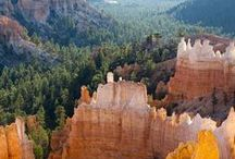 U.S. Canyons and National Parks / Escaping the city life in U.S. For more #TravelTips and #TravelStories, explore the world with us through our #TravelBlog http://www.travelwithmk.com
