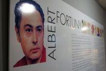 Exposició Albert Fortuny / El dia 5 de juny de 2014 va ser inaugurada l'exposició per este motiu volem encetar una secció on publicarem les exposicions organitzades per l'Arxiu i Biblioteca Municipals de Picassent.