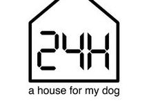 #01-|24H COMPETITION| / // a house for my dog //