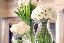All White Weddings / by Aromabotanical