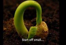 Kasvit kasvaa