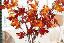 Fall  / Season