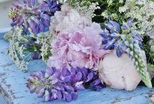Blomsterdrömmar