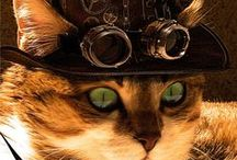 Hopelessly Steampunk / At Arcane Objects we lean towards the Steampunk aesthetic. We wanted to share some of the best examples of Steampunk art and costuming we've seen.