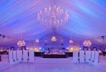DAVID TUTERA EVENTS / DAVID TUTERA IS OUR FAVORITE EVENT DESIGNER / by www.shophollyrotic.com