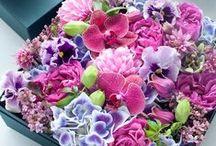 Flowers make me happy!