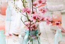 CHERRY BLOSSOM - SAKURA / cherry blossom, sakura, fleurs de cerisier, food, design, things...