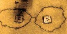 calendario / fotografie di muri marciapiedi acque legno corpi paesi, a cura di   MASSIMO VASENA