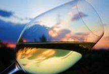 """Il Molise in un bicchiere / Wine in Molise - Il Tintilia è da considerarsi il vitigno più intimamente legato alla storia ed alla tradizione della civiltà contadina del Molise. Fino a qualche decennio fa, la sua origine e i suoi caratteri morfologici e genetici erano incerti: oggi si può affermare che il Tintilia sia arrivato in Molise nella seconda metà del 700 sotto la dominazione spagnola dei Borboni. Esso deriverebbe dunque il suo nome dall'etimo Tinto che in lingua iberica significa """"rosso""""."""