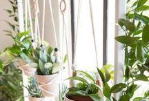 JARDINES VERTICALES / Todos los espacios pueden ser intervenidos con plantas. / by RETA