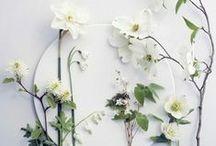 WHITE ADDICT / White lovely color, déco, design, food...