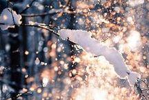 Winter Essence