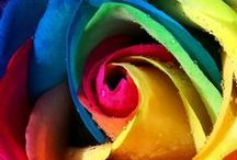 eKartki - inspiracje, cytaty / #Ideas #Inspiration #ecards
