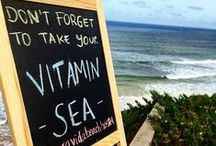 BEACH QUOTES / Pura Vida Beach Hostel writes beach quotes. Start your day with happy vibes!
