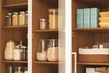 Organization, Storage, Housekeeping & Renovation Tips / by Brittany