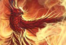 Phönix / Machst du dich neu - brenne ... wie der Phönix