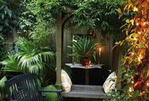 Tienda de Jardinería / Todo tipo de artículos para el cuidado de tu jardín. Descuentos, Ofertas http://137.devuelving.com/