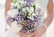 Lavender Motion | flowers and recipes