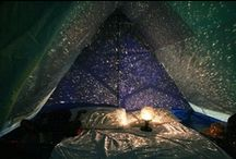 Grown Up Forts / by Felicity