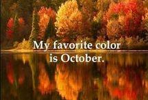 Autumn Splendor  / My Favorite Time Of Year / by Linda Imus