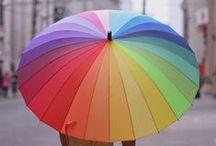 Şemsiyeler / Yağmurlu kış günlerinin en renkli şemsiyeleri